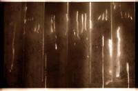 light sticks 02